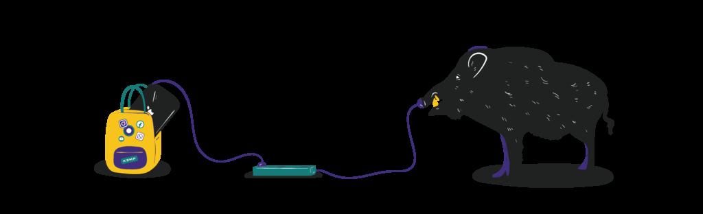 kemp ilustrácie