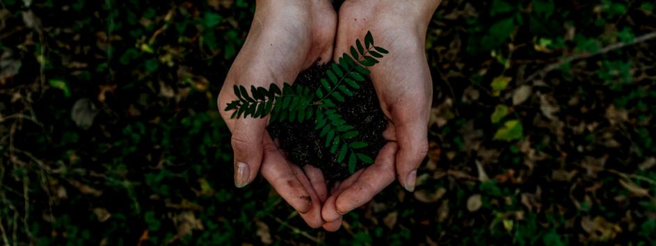ekologická súťaž